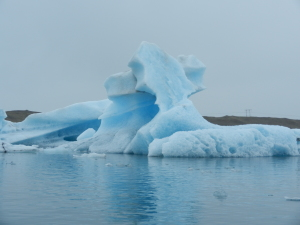 Financial Risk Management - avoid the icebergs